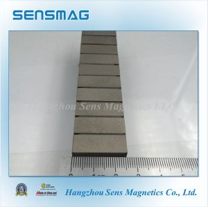 Rare Earth Permanent Magnet for Sensor, Instrument pictures & photos