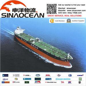Shipping Ningbo Shanghai Shipping Sea Freight Hamburg Rotterdam Felixstowe
