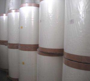 Fiberglass Surface Tissue 50 G/Sqm (Surface Viel) pictures & photos
