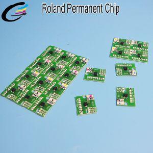Premium Quality Eco Sol Max2 Ink Chip for Roland Versacamm Vs-640I Vs-540I Vs-300I Arc Chip pictures & photos