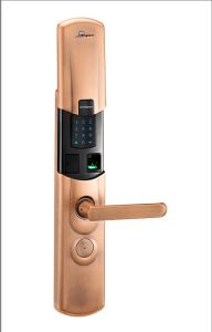 Fingerprint Lock pictures & photos