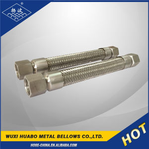 ISO Approved Stainless Steel Bellows Flexible Metal Hose pictures & photos