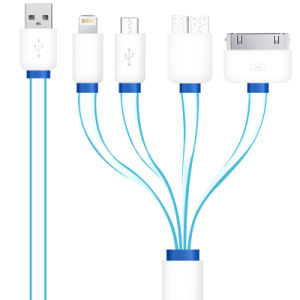 Hihg Quality 4 in 1 Noodle Flat USB Cable Six Color 100cm for iPhone Sangsung pictures & photos
