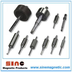 Strong Permanent Magnet Rotor/Magnetic Assembly pictures & photos