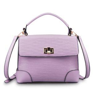 Fashionable Designer Luxury Leather Women′s Handbag (LY05028)