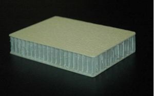 Rough Surface FRP Honeycomb Panels pictures & photos
