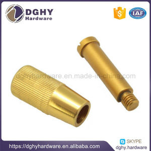 CNC Machine Worm Shafts for All Sizes From Professional Factory