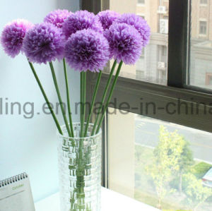 Single Pop Mum Flower for Home Decoration (SW13301) pictures & photos