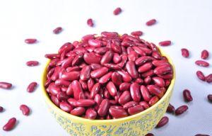Wholesale Delicious Non-Gmo Red Kidney Beans