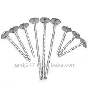 Gi Coil Roofing Nail with Umbrella Head pictures & photos