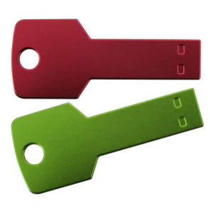 Best Promotion Key Shape USB with Logo Prining pictures & photos