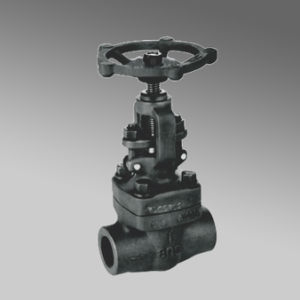 Double Flange API Forged Steel Gate Valve pictures & photos