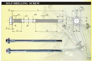 Hex Washer Head Long Point Drilling Screw pictures & photos