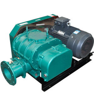 Low Temperature Carbonization Air Blower