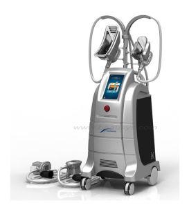 Newest Cryolipolysis Slimming Machine