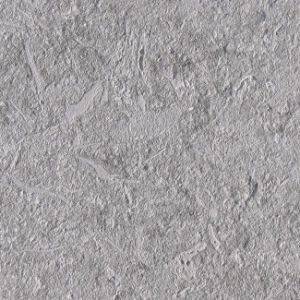 Natural Italian Grey Shell Stone Limestone Wall Tile for Exterior pictures & photos