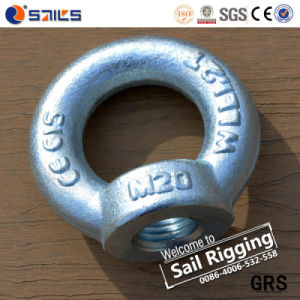 Zinc Plated Drop Forged DIN582 Rigger Lift Eye Nut pictures & photos