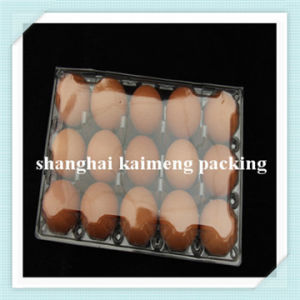 15PCS Hole Clear Plastic Material Cheap Decorative Transparent Pet Egg Tray