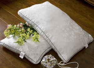 Double Stitch with Piping 15% Goose Down Pillow pictures & photos
