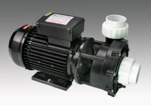 Lx Wp250-II Wp300-II Wp200-II Pump, 2 Speed Pump