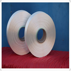Semidull Bright Nylon 6 Raw Material HOY Yarn pictures & photos