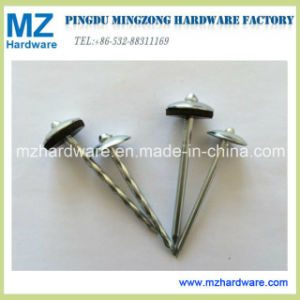 "Bwg9*2"" Hot Sales Umbrella Head Twist Shank Roofing Nail pictures & photos"