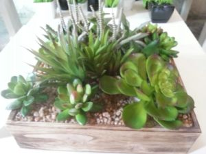 Artificial Plants and Flowers of Succulent Gu-SD0086 pictures & photos