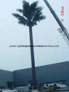 Communication Telecom Camouflaged GSM Antenna Tree Monopole Tower pictures & photos