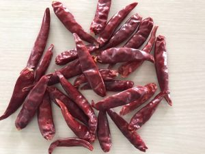 High Quality Chao Tian Chilli pictures & photos