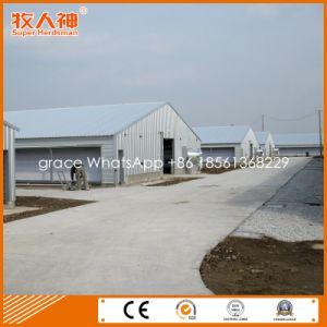 Prefab Poultry House for Modern Livestock Farm From Factory with Housing Equipment pictures & photos