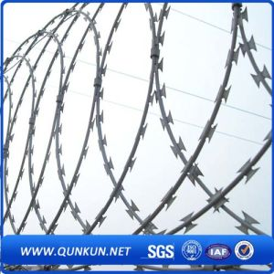 Galvanizede Bto-22 Razor Barbed Wire for Farme Using pictures & photos