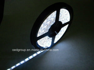 SMD3528 60/120/240LEDs RGB/ IP68 Waterproof LED Flexible Strip pictures & photos