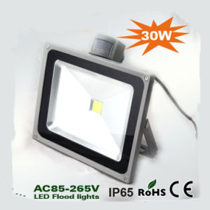 IP65 Heavy Sensor 30W LED Flood Light pictures & photos