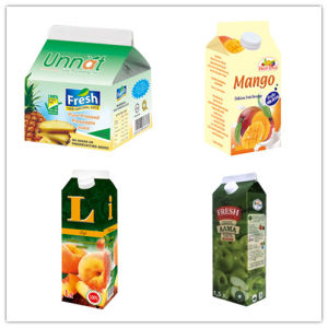 Carton/ Box for Fresh Juice/Milk/Cream/Wine/Water pictures & photos