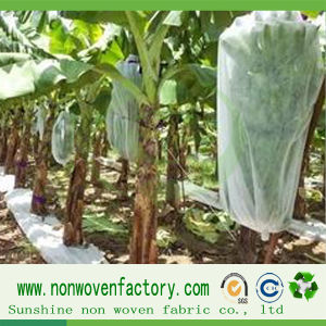 PP Spunbond Nonwoven Banana Cover with UV Stabilized pictures & photos