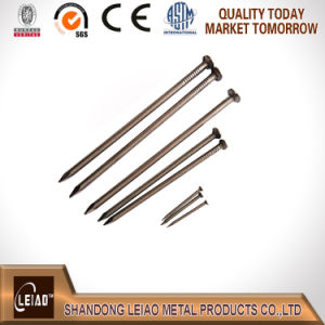 Common Wire Round Nail pictures & photos