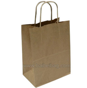 Twisted Paper Handle Kraft Paper Bag (HBPB-8) pictures & photos