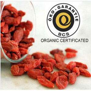 Orginc Certification Dried Goji Berry pictures & photos