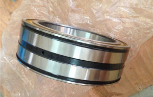 Double Seal Double Row Full Complement Fyh SL045040-Pprrc3 Roller Bearing pictures & photos