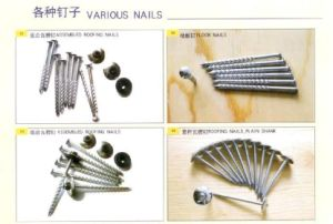 High Quality Galvanized Roofing Screw Nail