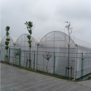 Low Price High-Quality Plastic Greenhouse pictures & photos