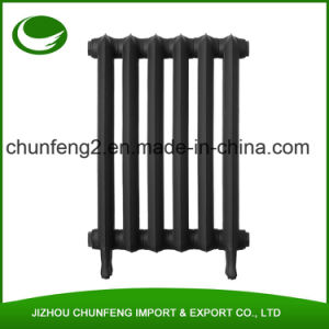 Tall Princess 2 Column 760mm Cast Iron Radiators pictures & photos