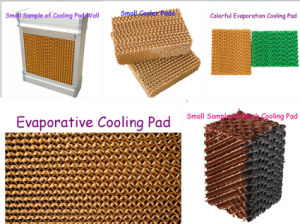 Evaporative Honeycomb Cooling Pads pictures & photos