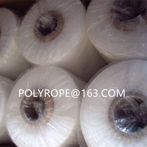 Monofilament Yarn pictures & photos