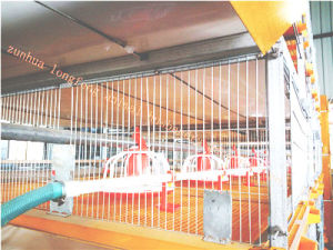 High Quality of Automatic Chicken Cage pictures & photos