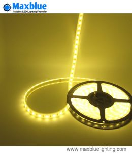 High Density New Rgbww LED Strip (96LEDs/m 4in1) pictures & photos