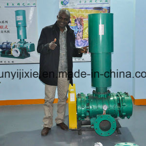 High Volume High Wear Resistance Cast Iron Melting Furnace Blower pictures & photos
