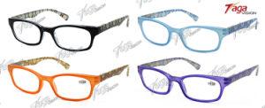 Fashion Design Reading Glasses Eyewear (SR3734)