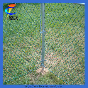 Chain Link Mesh Fencing (CTWM-5) pictures & photos