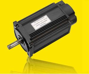 Series 24V BLDC Motor for Industrial Application pictures & photos